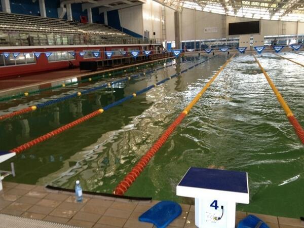 Joburg Pools Turn Green Again Zwemza