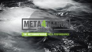 META4MANCE